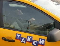 федеральный закон о такси фз 69